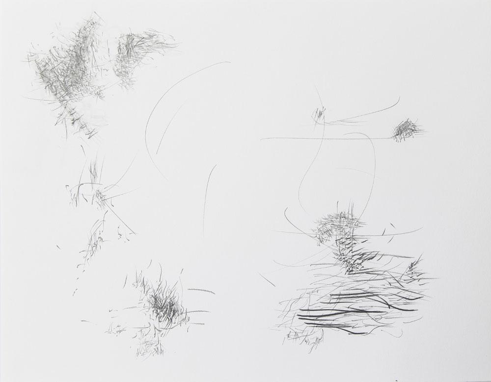 <i>Flow</i>, lápiz sobre papel, 27,9 x 35,6 cm, 2017