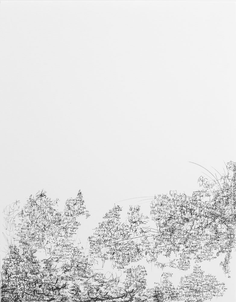 <i>Sin título</i>, fibra sobre sobre papel, 35,6 x 27,9 cm, 2018