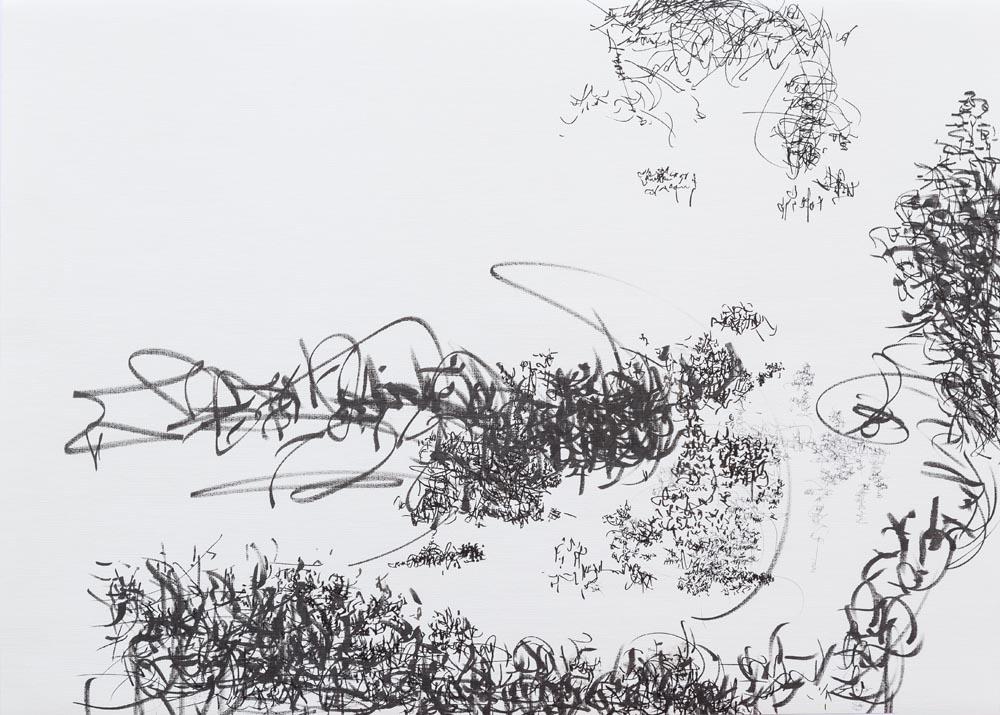 <i>Graffiti</i>, fibra sobre papel, 50 x 70 cm, 2018
